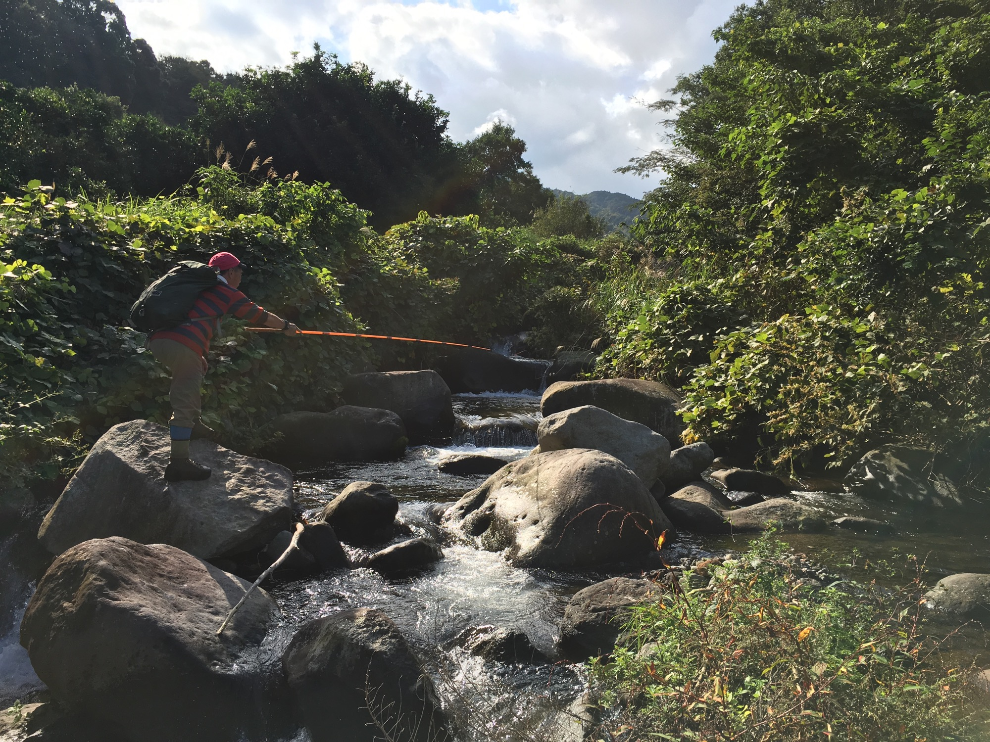 Tenkara fly fishing for spunky Amago trout.