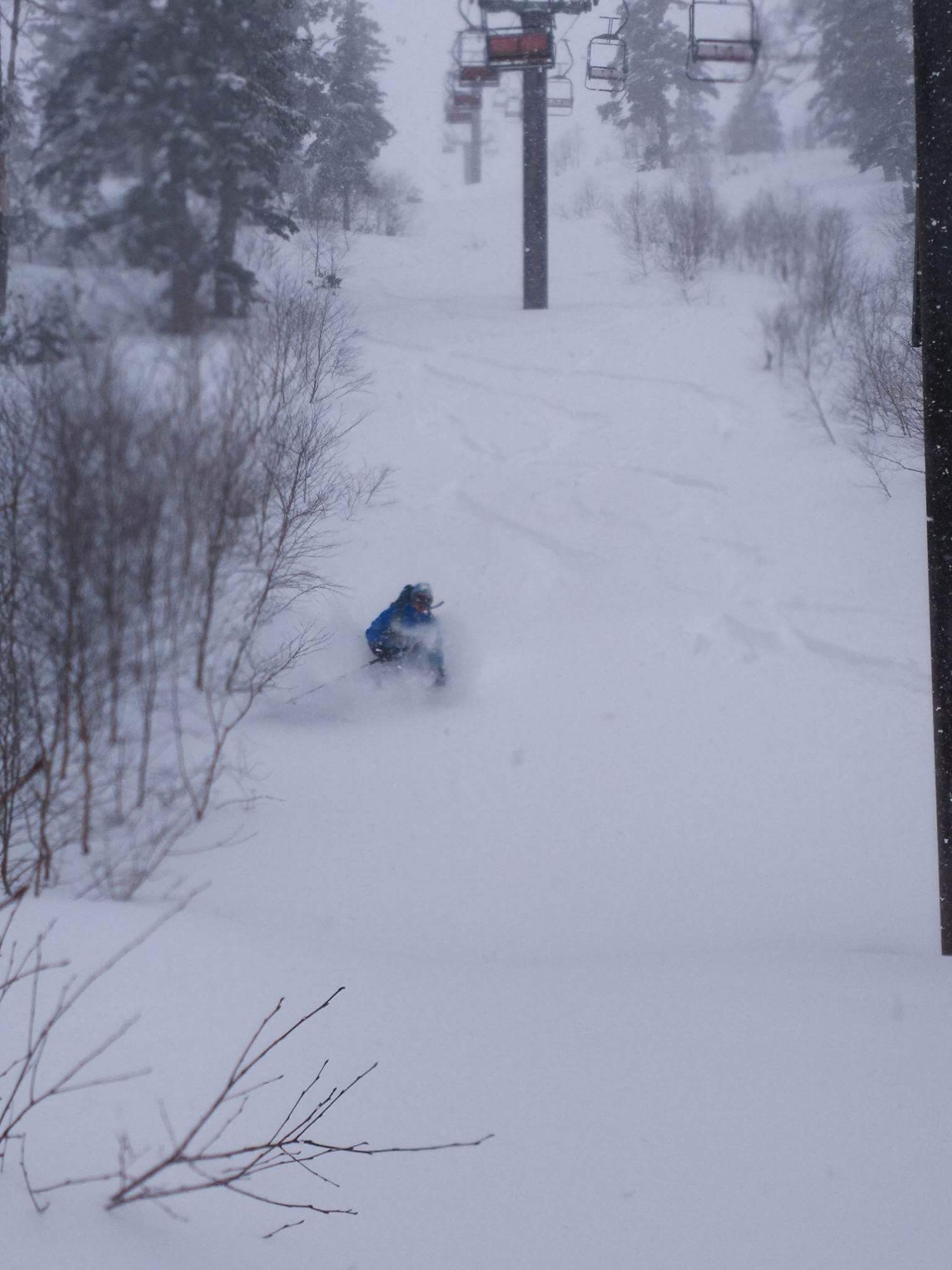 Untracked blower Japow baby