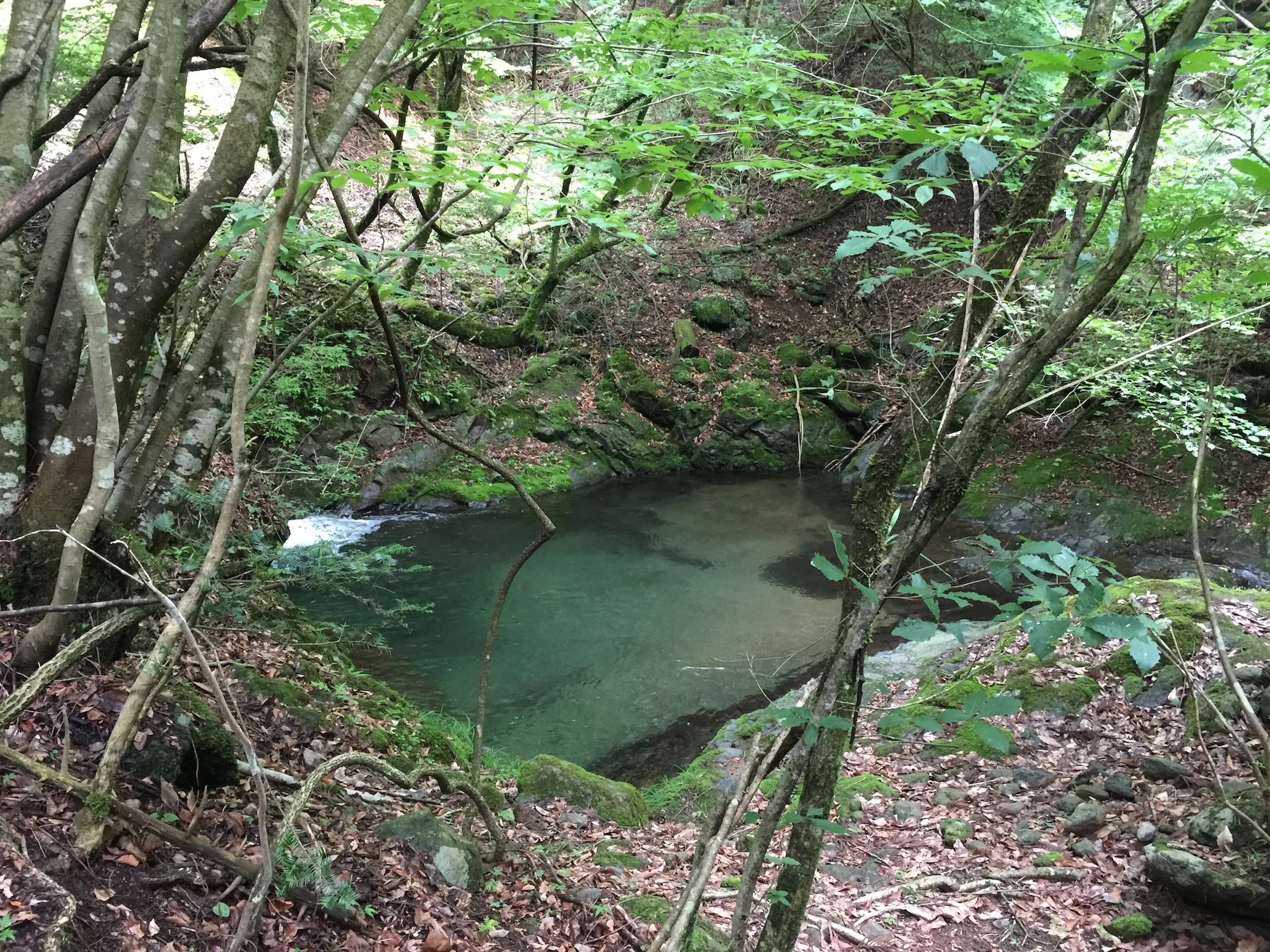 What makes Epidote Creek truly magical