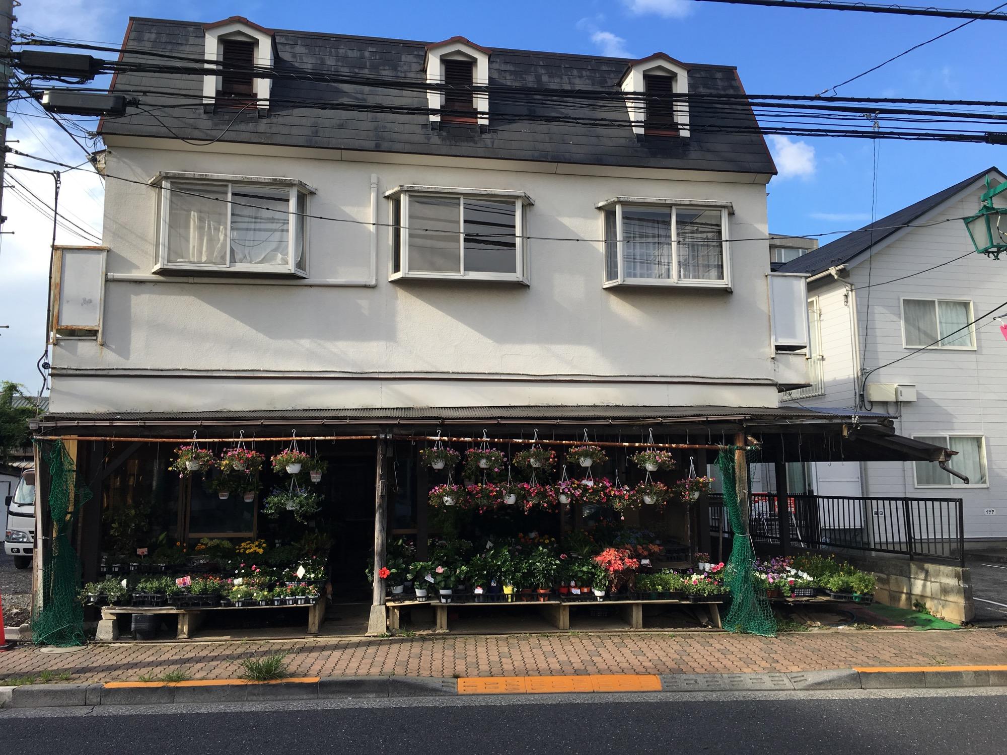 A nearby flower shop