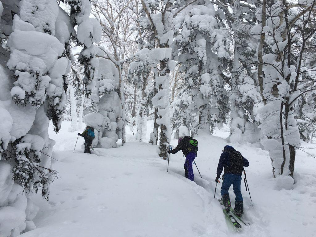 Skiing up Furanodake