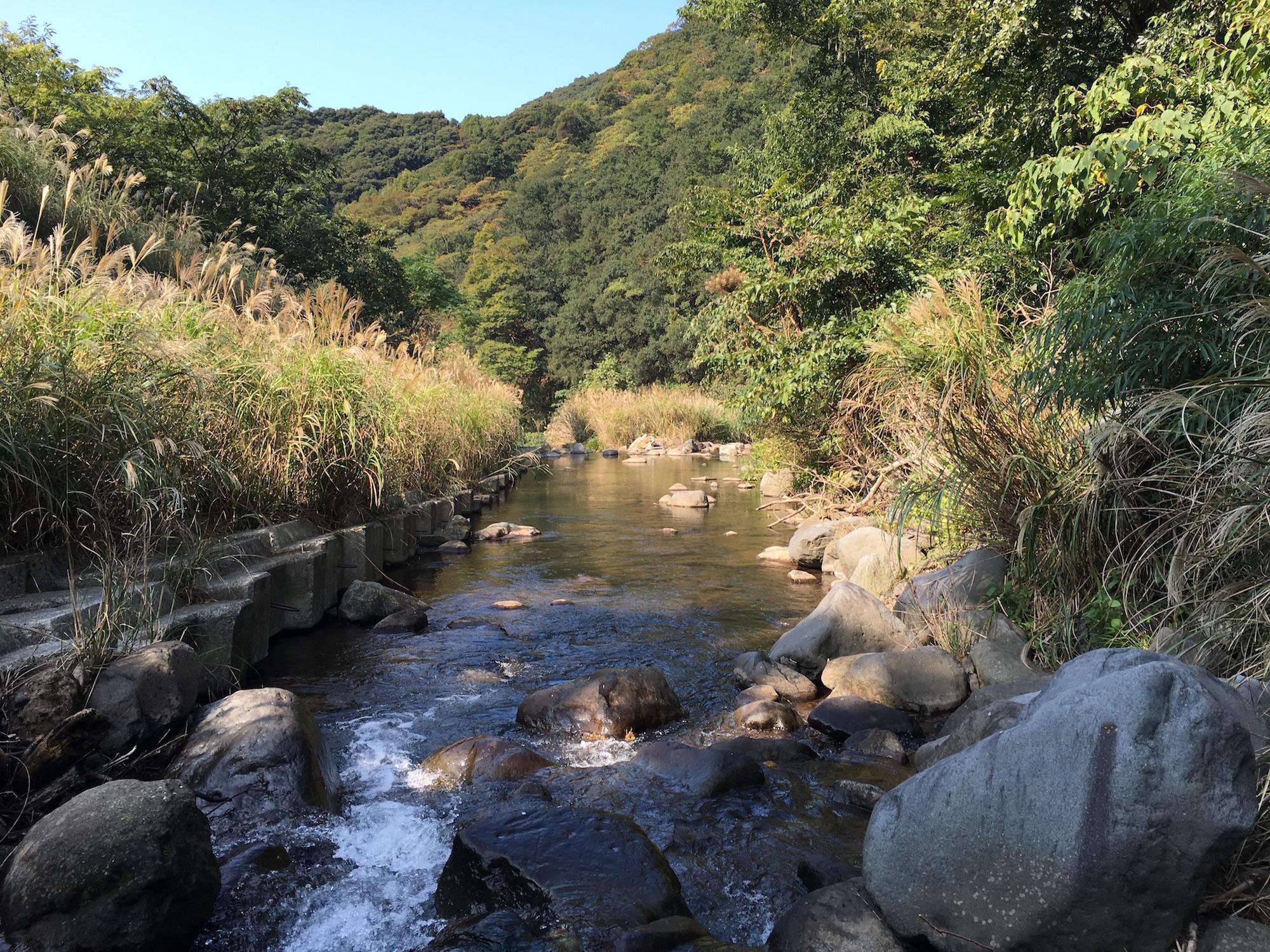 A lovely stream