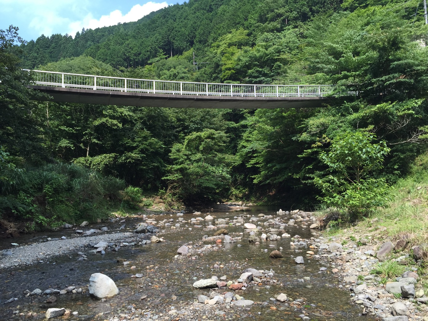A footbridge over the lower river
