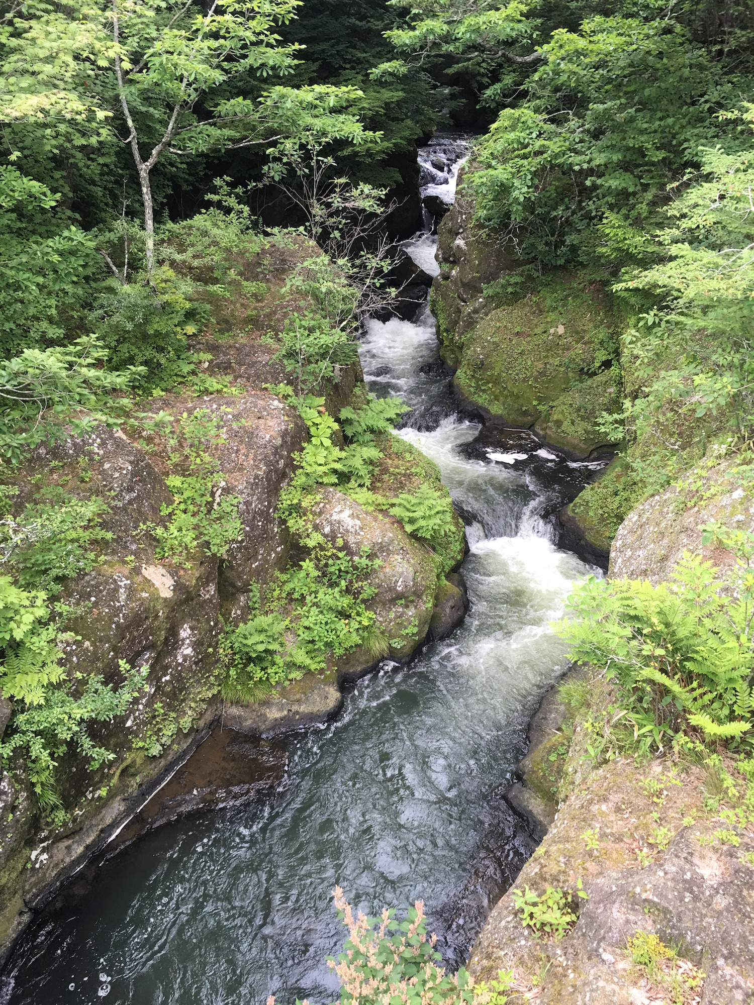 The river flowing out of the highlands towards Nikko