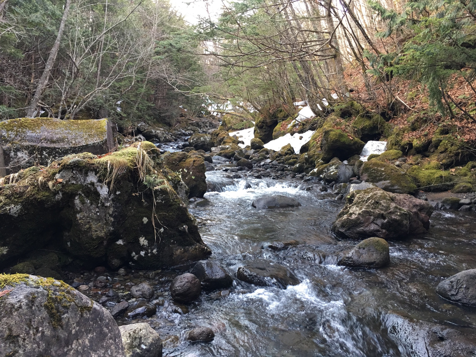 Moss covered boulders next to a snow melt gorged brook