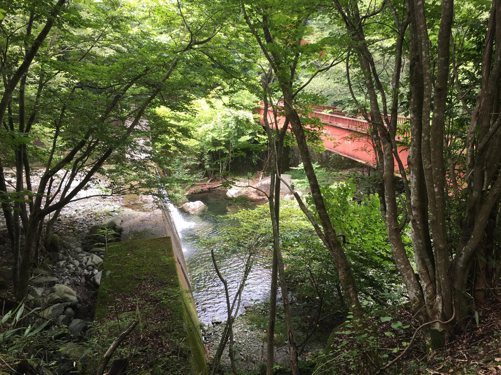 A long abandoned bridge