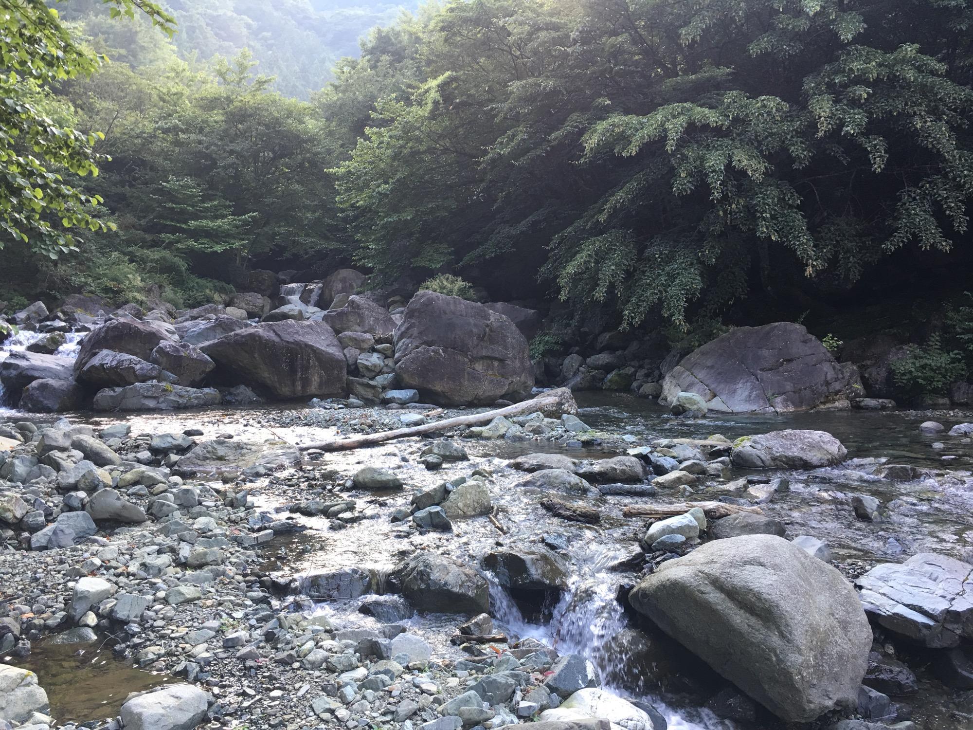 A beautiful mountain stream